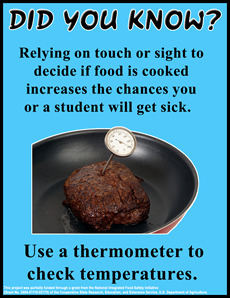 Thermometer use poster thumbnail